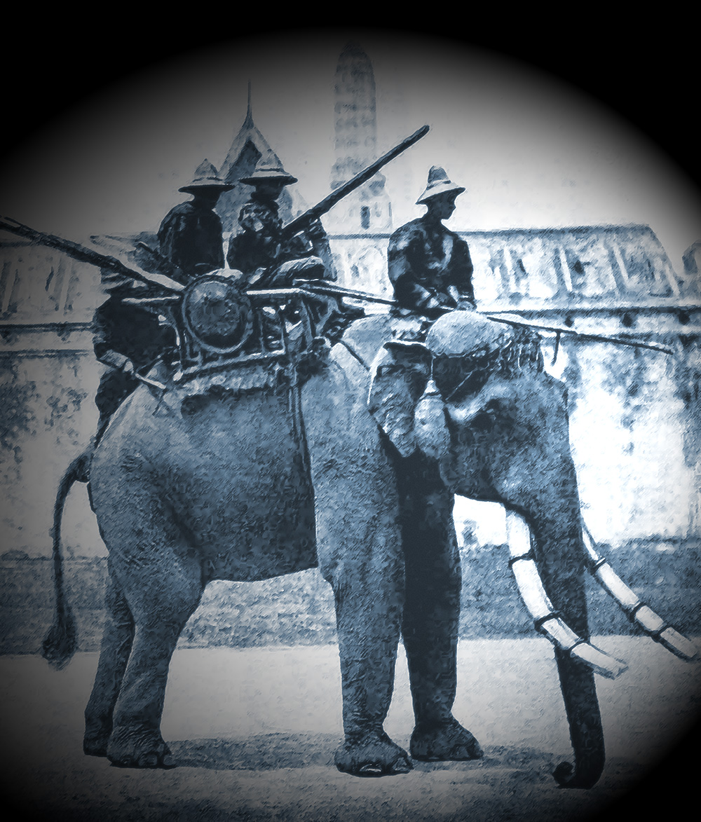 War Elephant, 1866