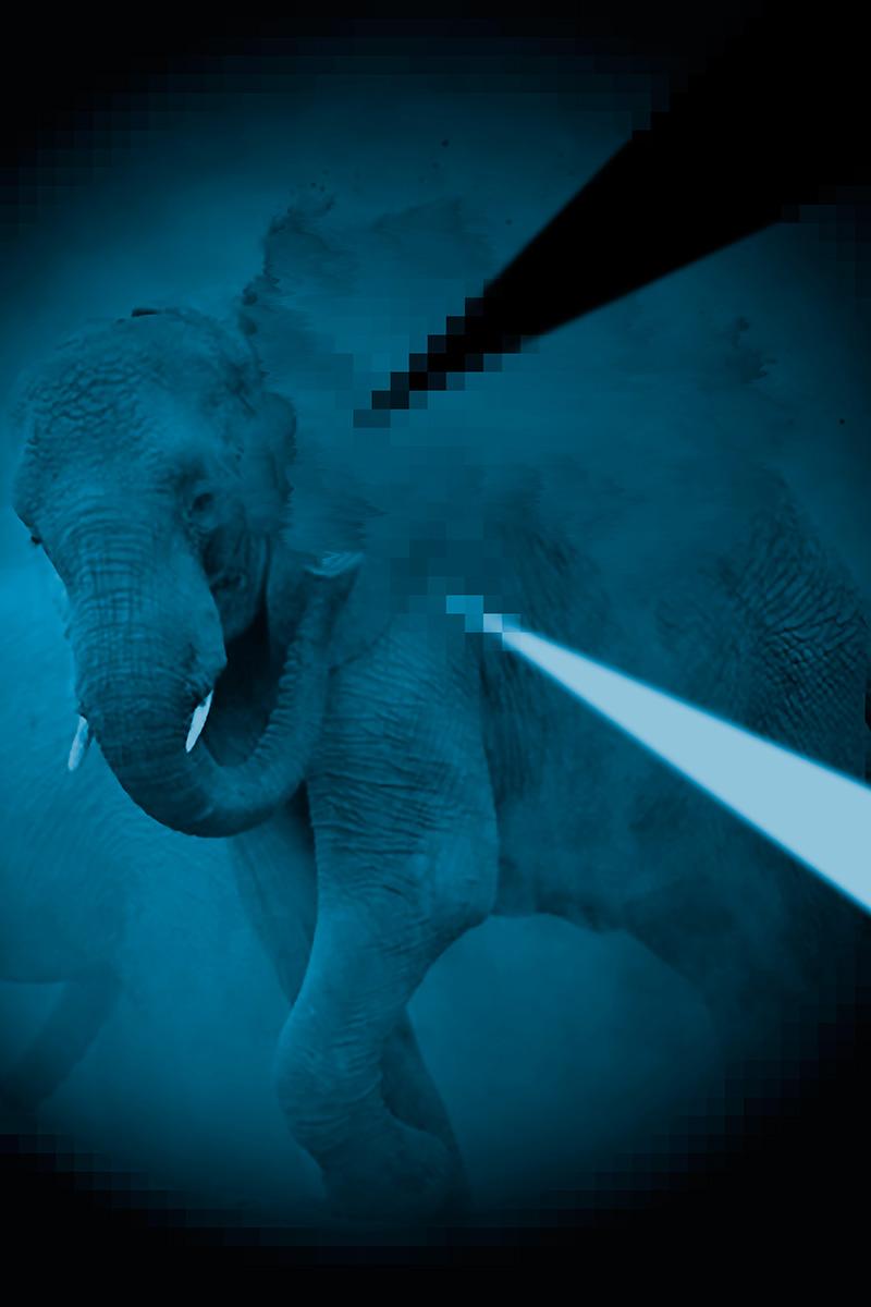 Elephant bathing in dust pixels