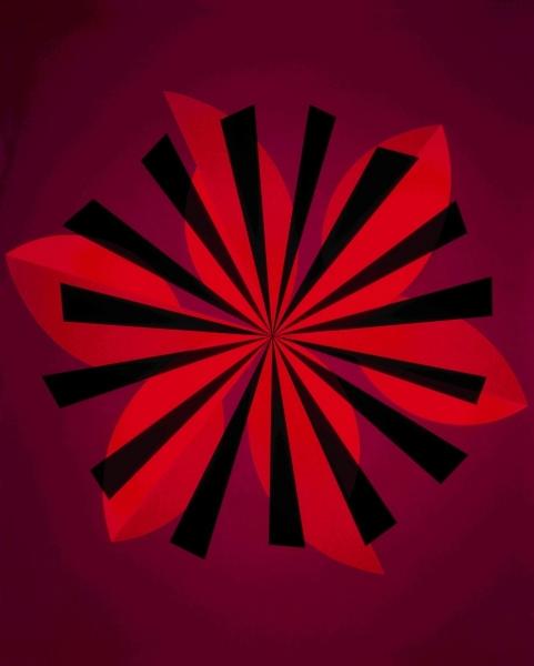Asterisk, 2005. 200 x 160 cm