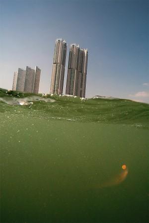 Hong Kong Island. From a Boat near Shau Kei Wan. 2010