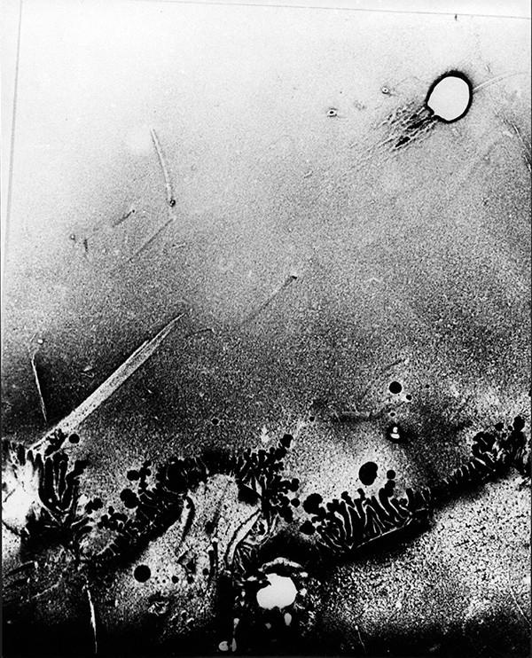 Milos Korecek, Album 10 fokalků pro Josefa, 1987, Vintage print, 35 x 28 cm