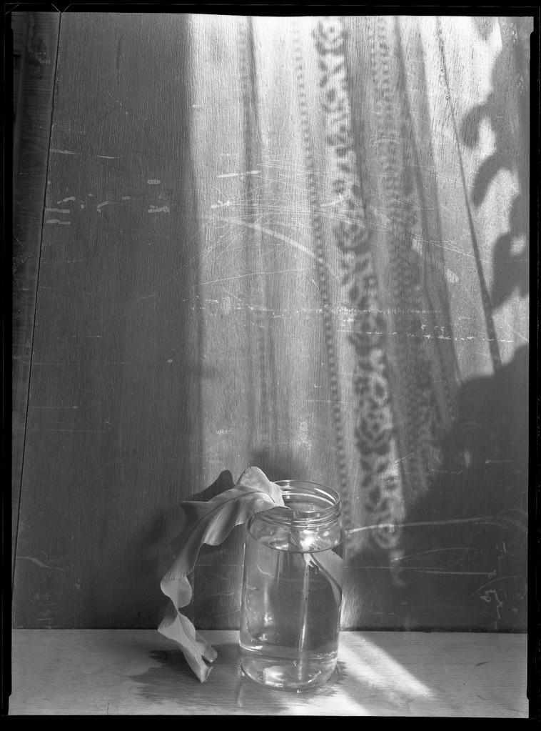 Glass mit Schatten, 1985