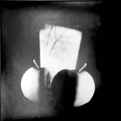 Jaroslav Rossler: Untitled (still-life:with apples), 20 x 20 cm,  2005, Ed. 2/5