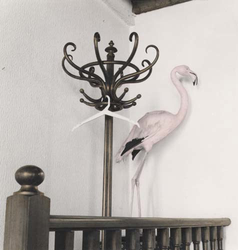 Suzanne Pastor: Flamingo restaurant, Arles, 1981