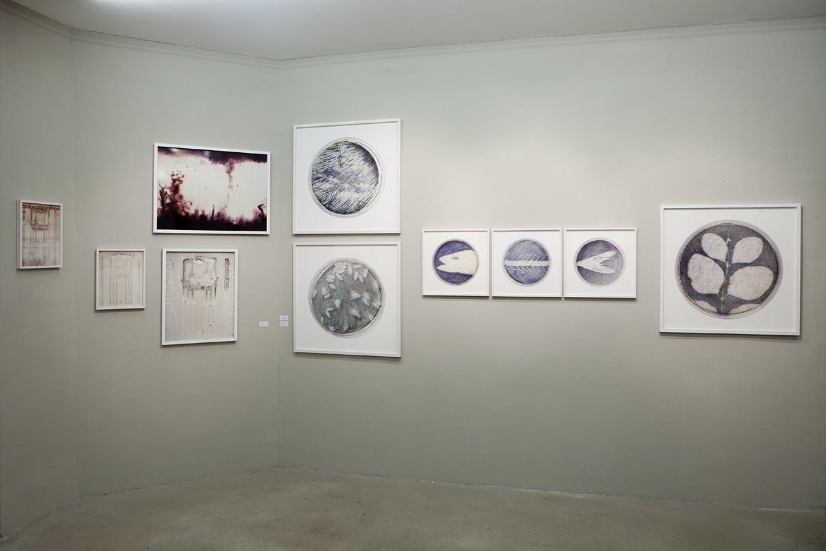 Raw Exposure (Ausstellungsansicht)