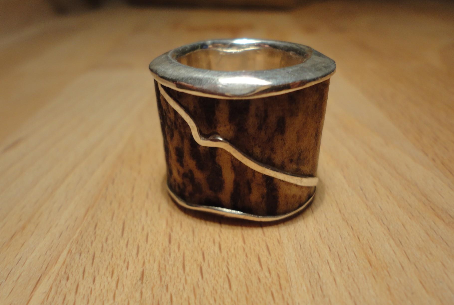 Hornring mit Silberinnenring und Silber-Intarsie (925 Sterlingsilber) Preis: CHF 380.-