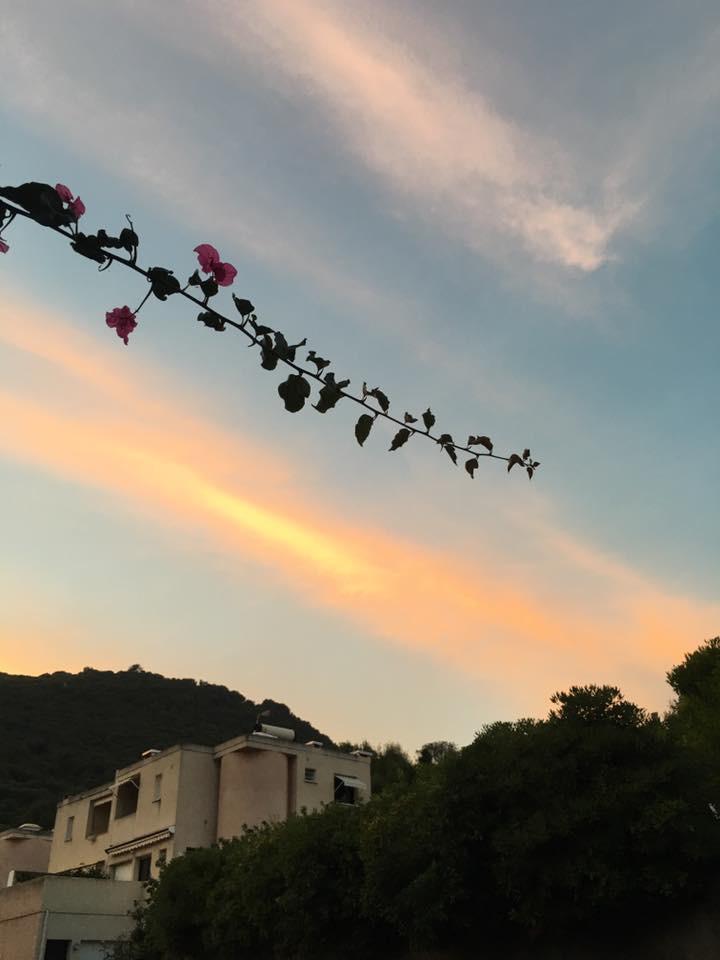 Vue du ciel prise du jardin - La maison de Ninette -