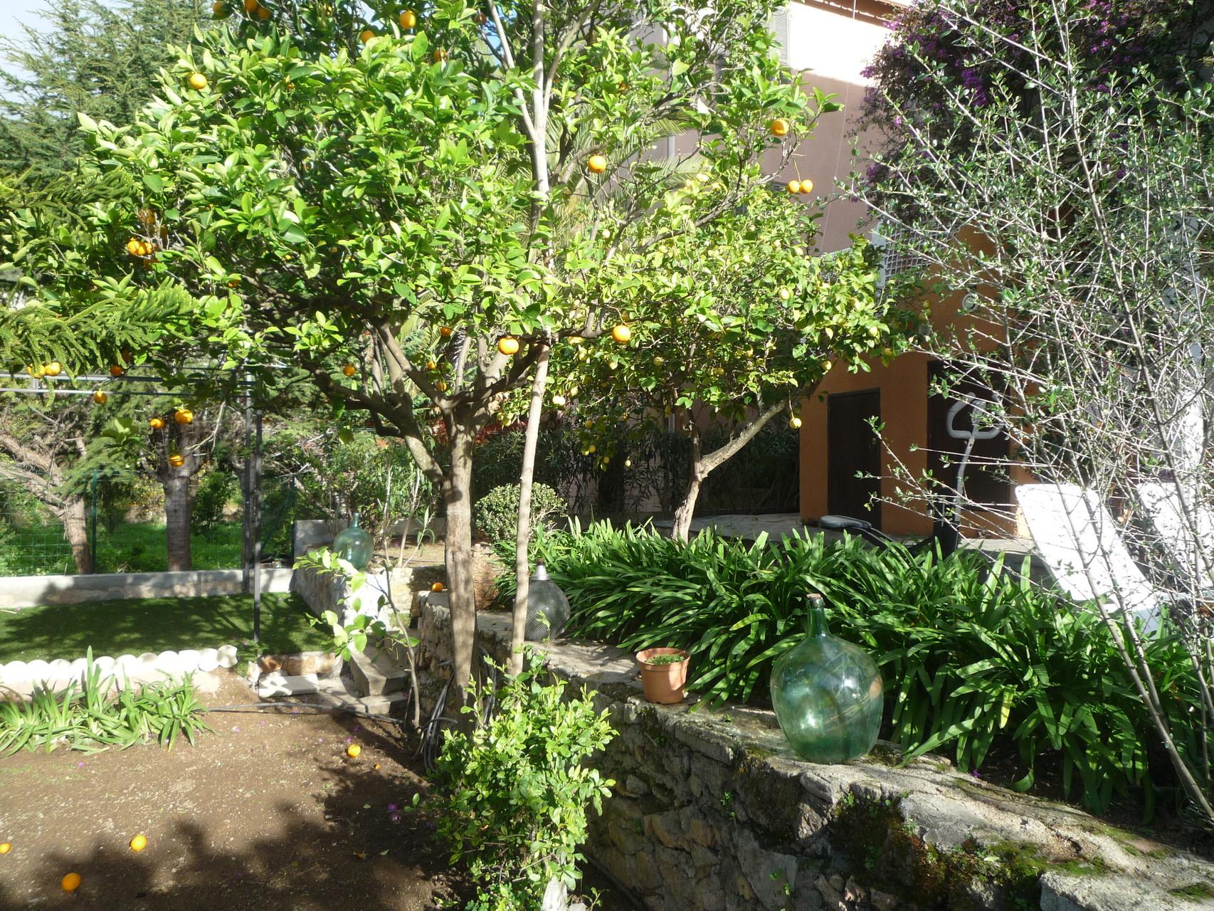 vue du jardin avec la tonnelle au fond - La maison de Ninette -