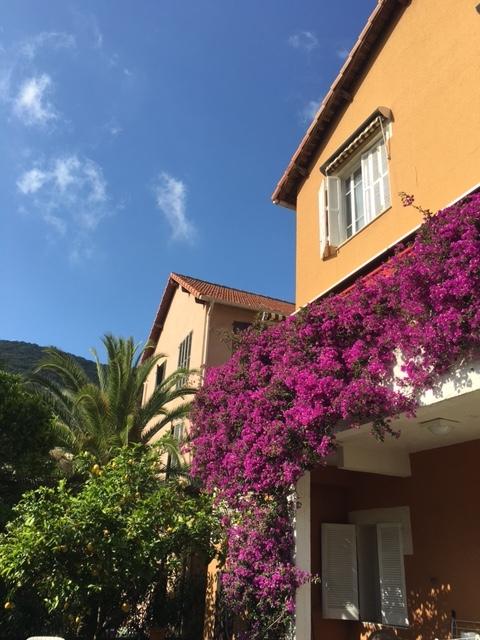 Vue de la façade du jardin - La maison de Ninette -