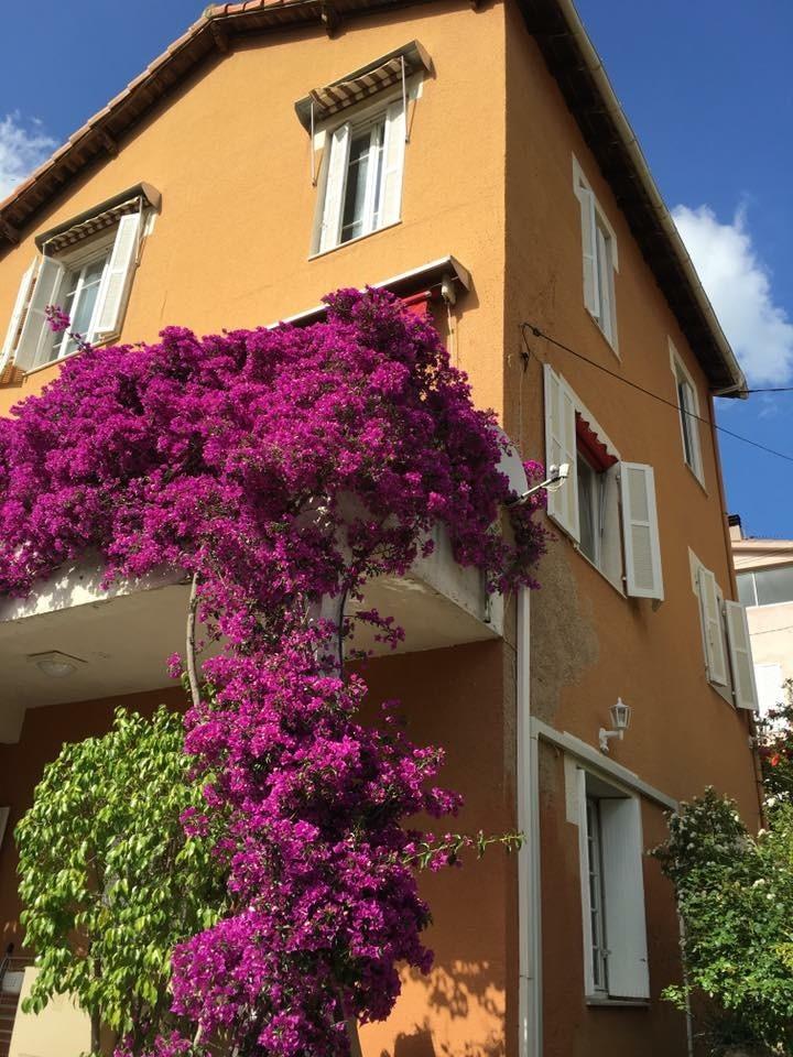 Superbe vue de la maison de Ninette prise du jardin - La maison de Ninette -