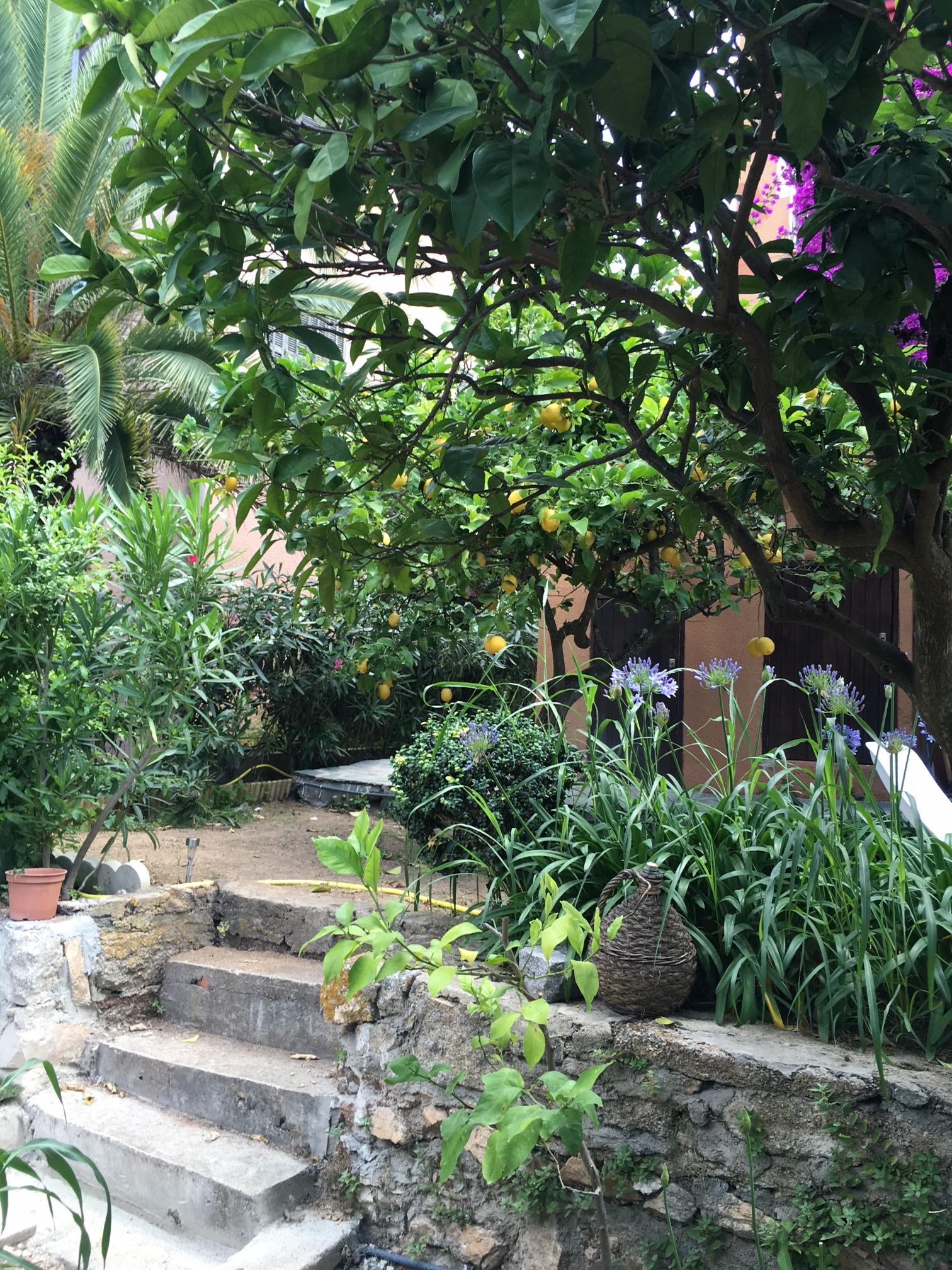 Le jardin près de la tonnelle - La maison de Ninette -