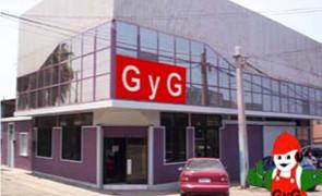 G Y G SEGURIDAD INDUSTRIAL