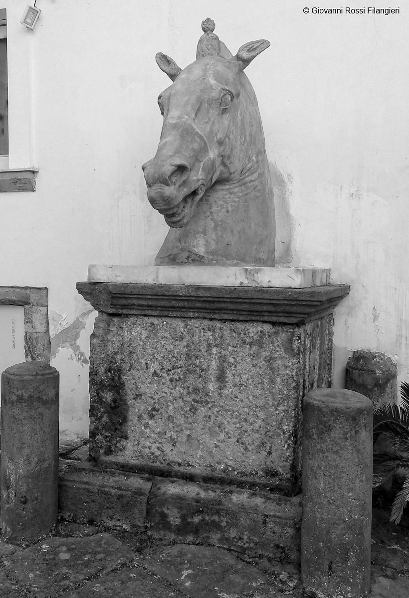 TESTA DI CAVALLO uno dei simboli di Napoli