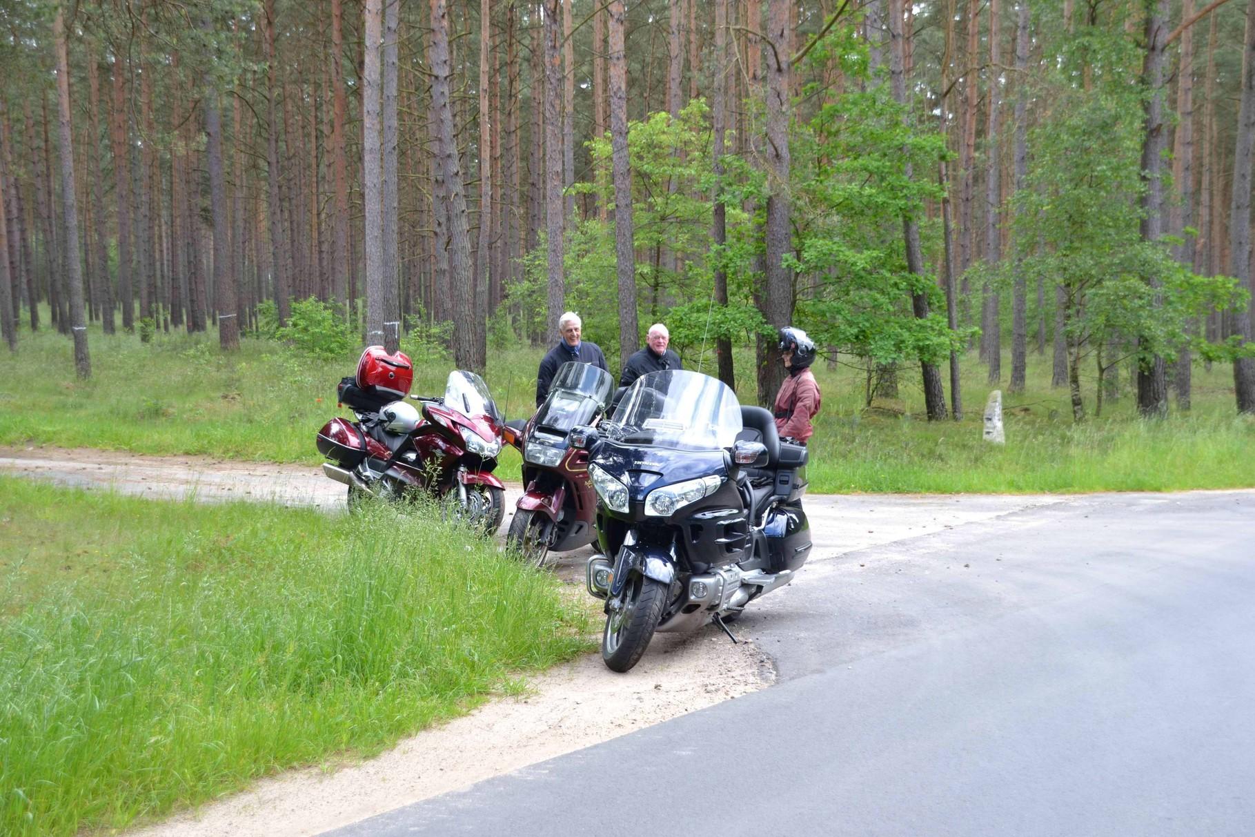 Walddurchfahrt.