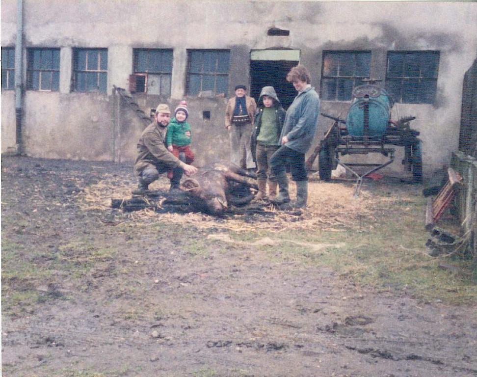 1985: Abattoir d'époque