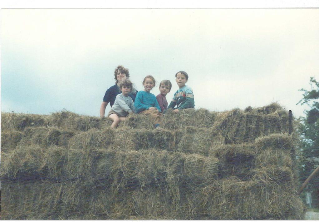 1987: Fenaison