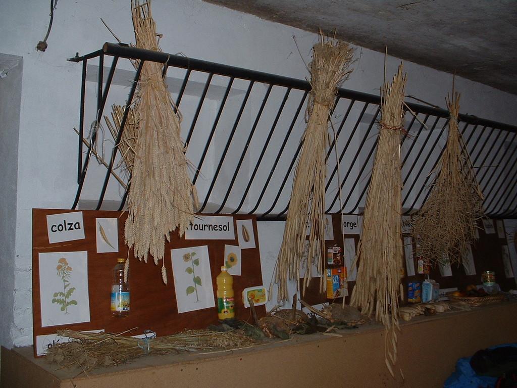 """2004-atelier """"cérales"""" dans la salle d'accueil avant les travaux"""