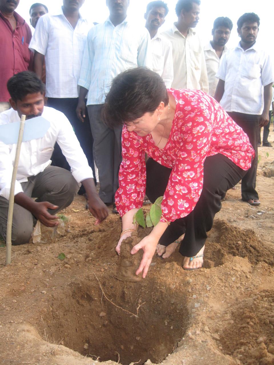 Plantation d'arbres à Thallakulam pour les 25 ans de POPE - Octobre 2011
