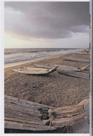 2004 - Catamaran est un mot tamoul qui veut dire bois attaché