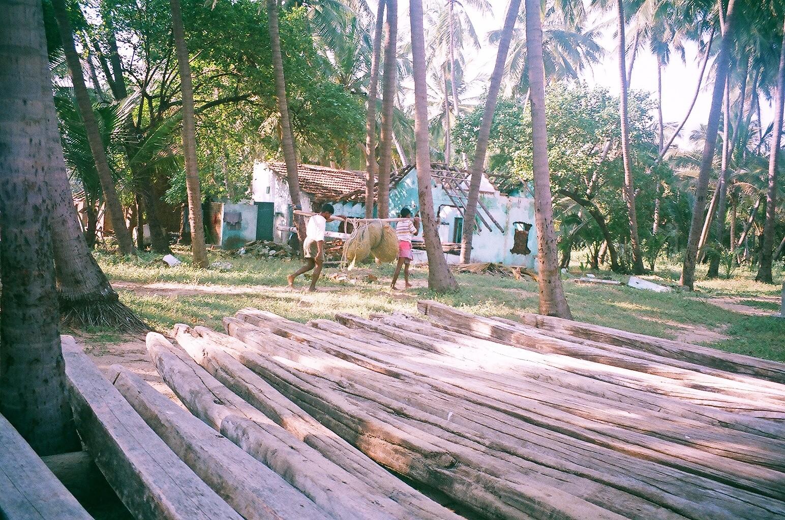 Décembre 2005 - Thazhankuda - Le bois des catamarans sont détachés et séchés avant la nouvelle pêche