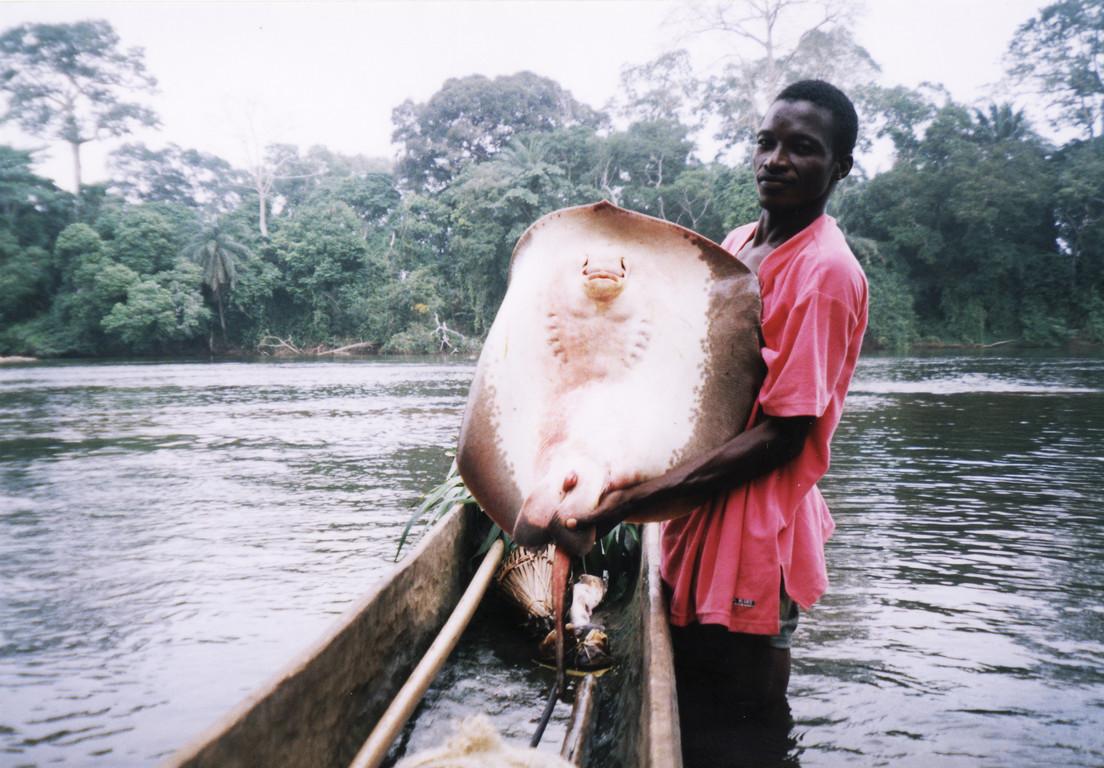 Possibilité de pêcher sur le fleuve ou en mer