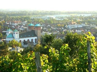 Blick vom Kirschberg auf Bensheim