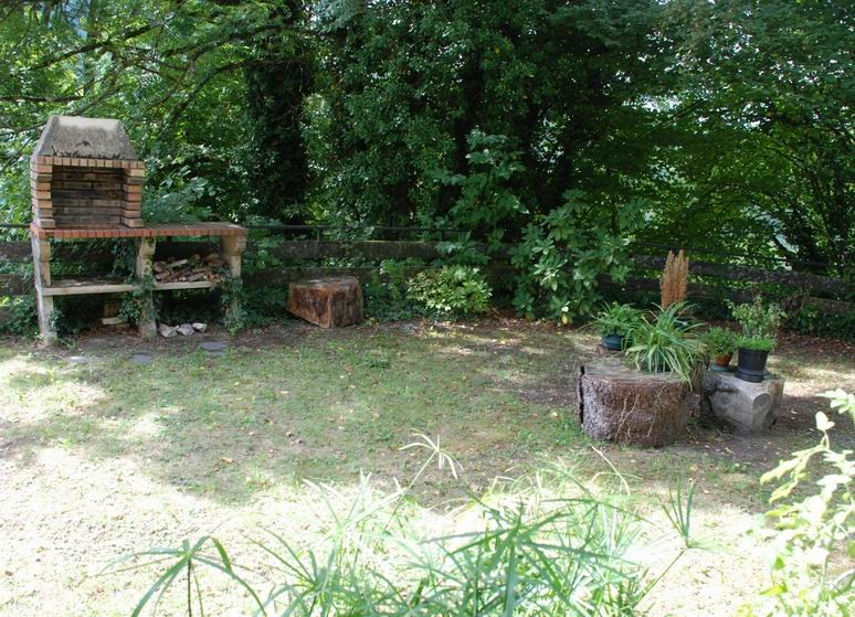 Private space in the undergrowth