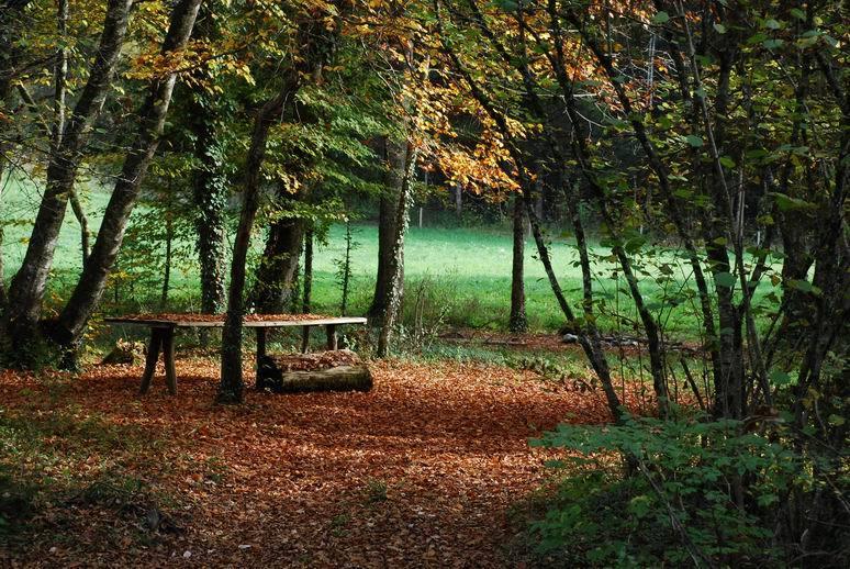 © www.berceau-savoyard.fr, sejour en haute savoie, naves-parmelan
