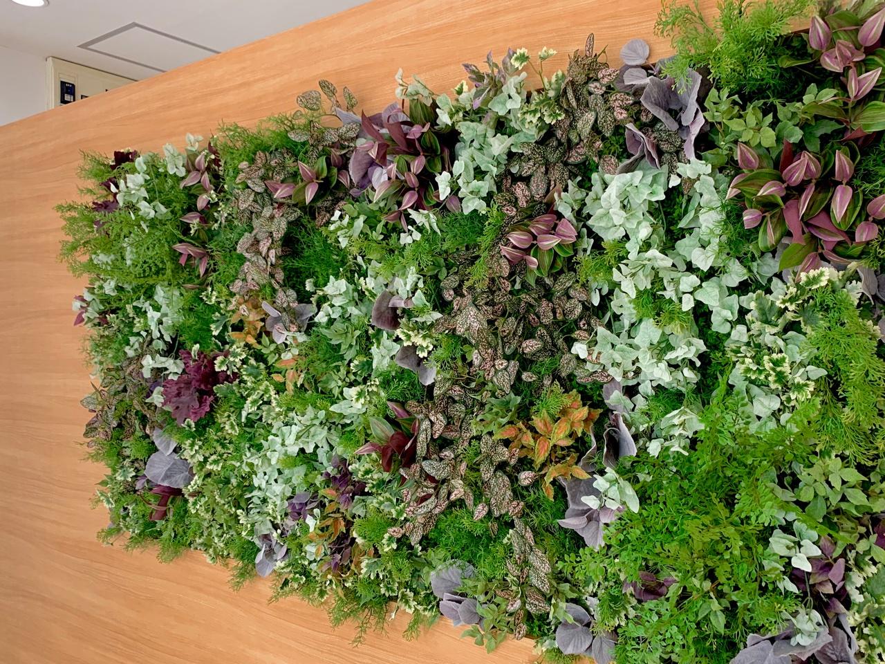 受付のバックパネルに壁面緑化のアーテフィシャルフラワー