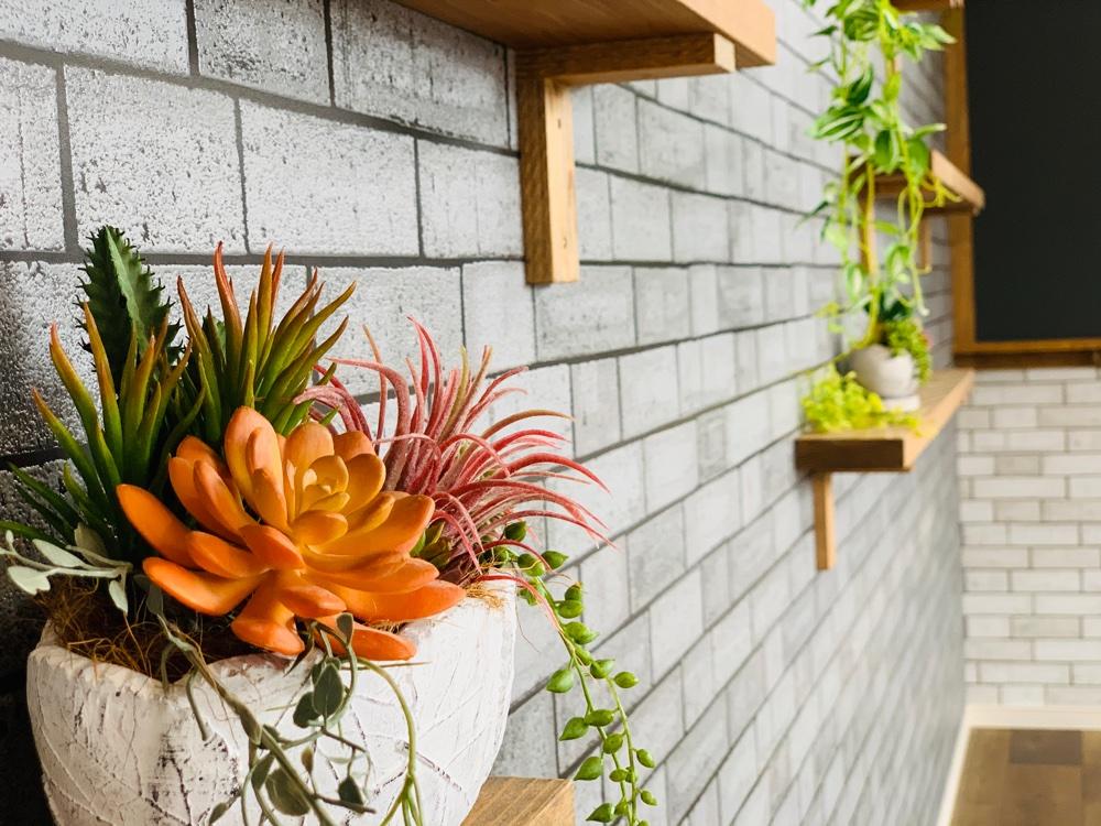 多肉植物のアートフラワーで壁面飾り