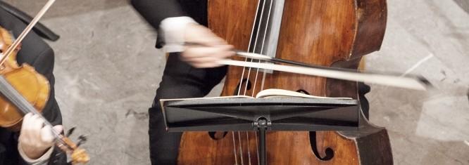 Klangforum Schweiz - Musiker Streicher Kontrabass