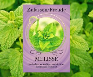 Melisse - Öl der Freude