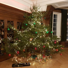 Unser Weihnachtsbaum.