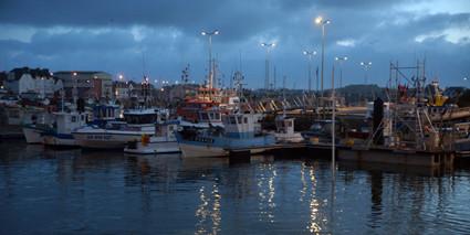 le port du Guilvinec à l'aube - © ville Guilvinec