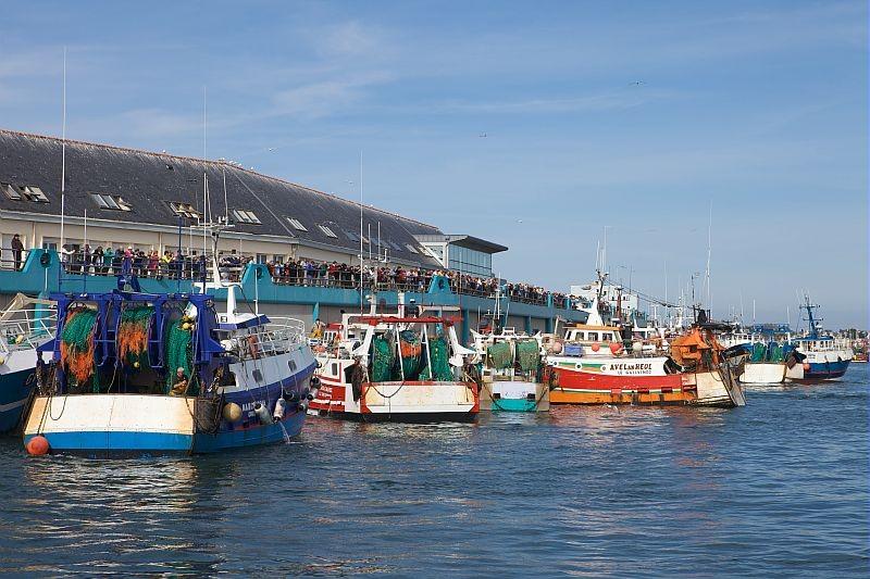 les bateaux devant la criée au Guilvinec - © ville Guilvinec