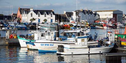 petit port de plaisance au Guilvinec- © ville Guilvinec