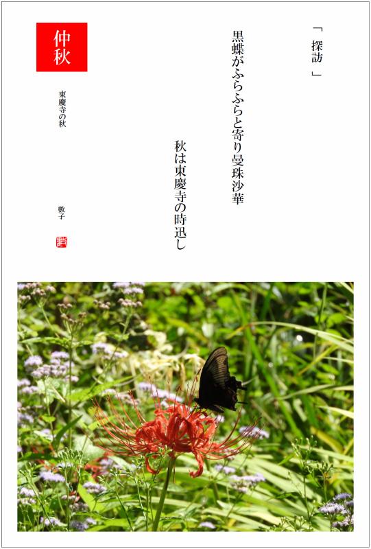 2017/10/01制作 東慶寺の秋