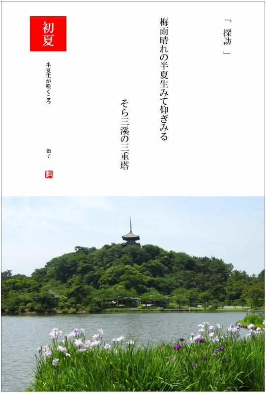 2017/06/23制作 半夏生が咲くころ
