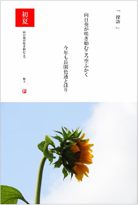 2017/07/14制作 向日葵が咲き始むころ