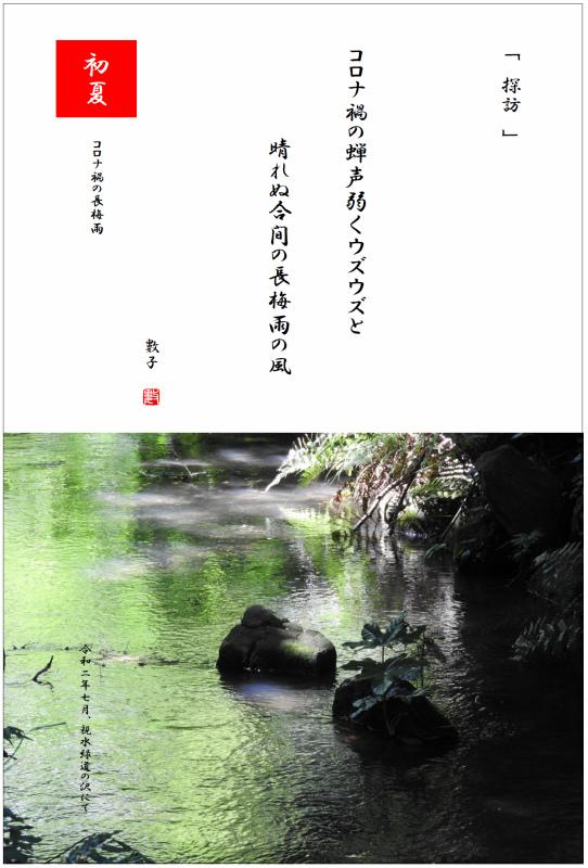 コロナ禍の長梅雨(ながつゆ) 2020/07/21制作