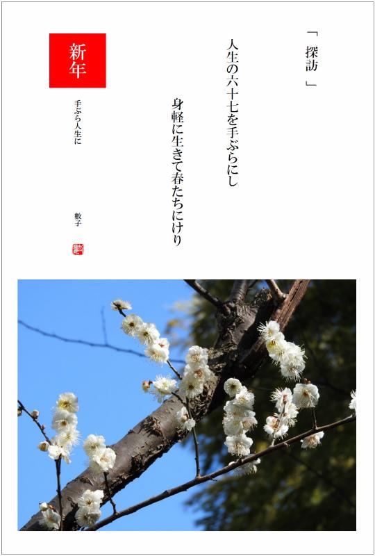 2017/02/10制作 散策路の白梅