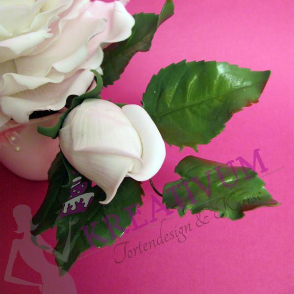Zuckerblüten Kurs Rosen