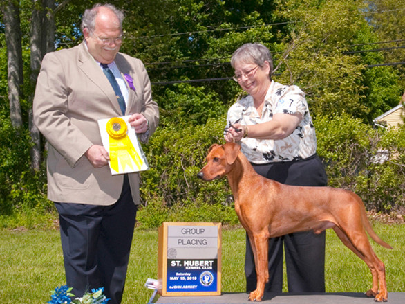 Multi CH, Multi Winner, BIS Dark Angels Aden Red Energy (Joey) BOB Best of Breed und Winner Group 3 in Maryland, USA 2010