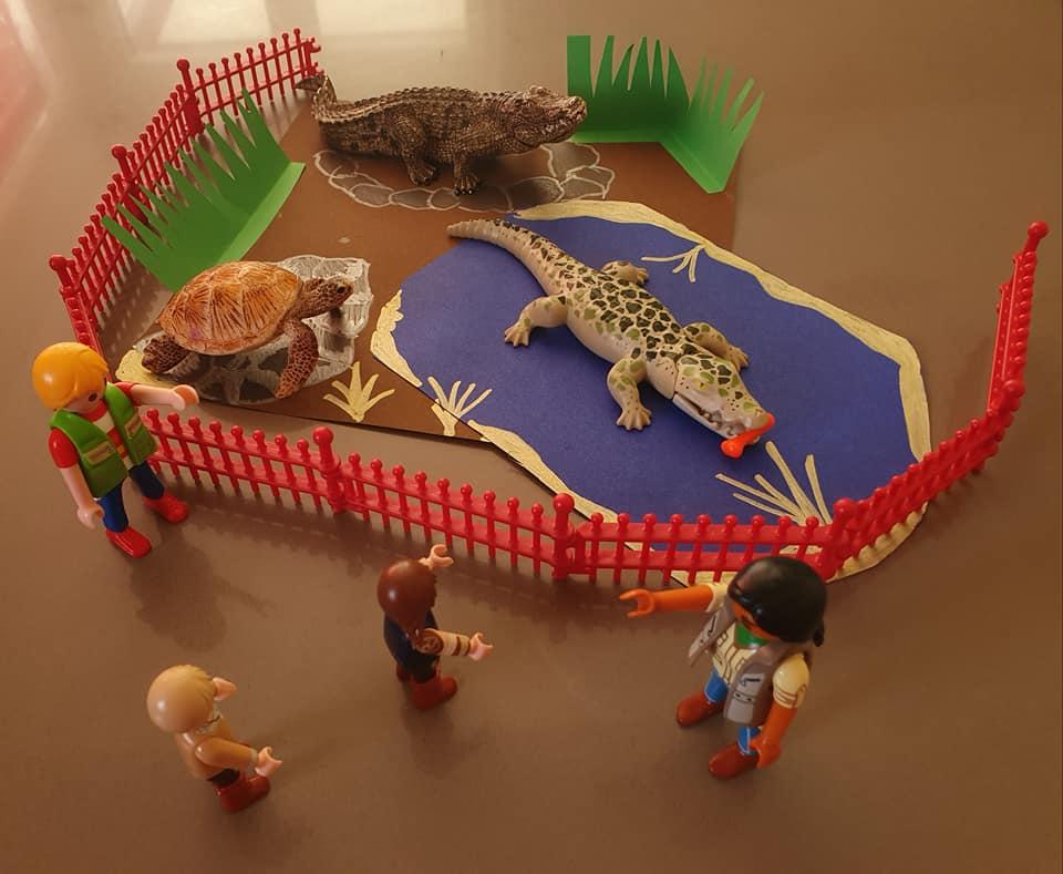 Danach fand die Fütterung der Krokodile statt. Fütterung fand Papa immer sehr spannend.