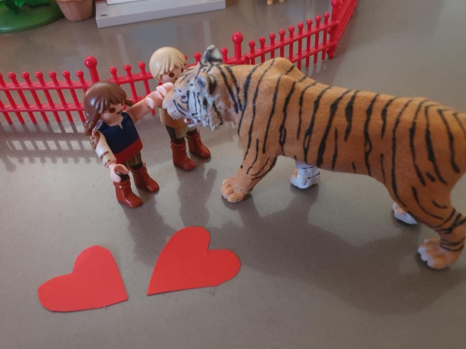 Der Tiger sagte, dass er gerne als Haus Katze bei der Familie leben wollte. Die Familie freute sich. Sie lebten glücklich und zufrieden bis an ihr Lebens Ende.