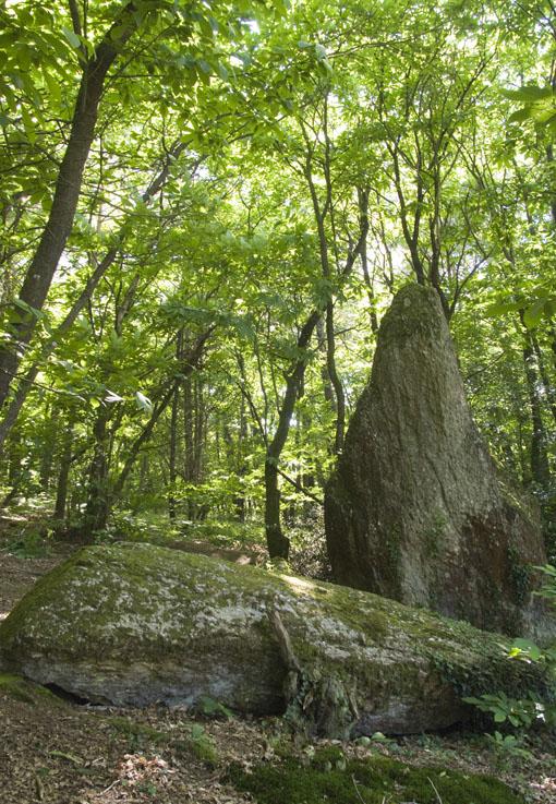 Le Menhir de la Roche Piquée, 2012