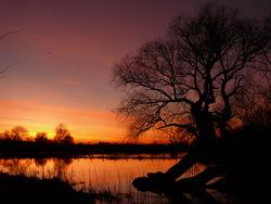 Sonnenuntergang an der Alten Leine