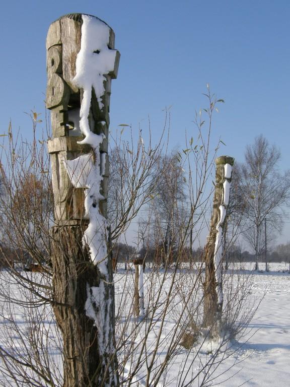 Lebensraum November 2008