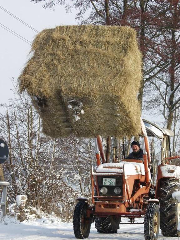 Futternachschub - Winter 2007