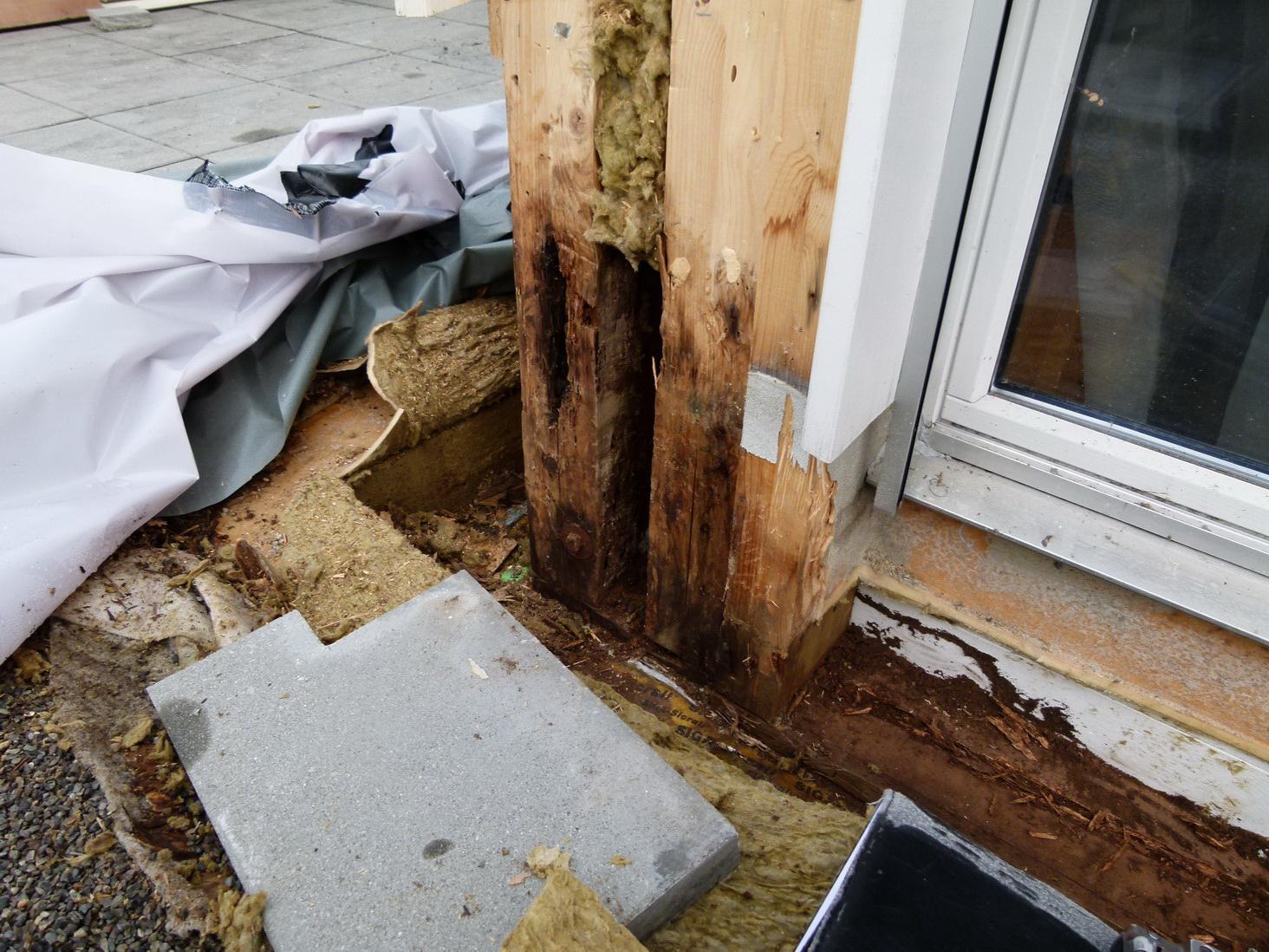 Holzbau Feuchteschaden Vermorschung